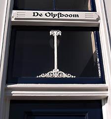 Mooie 'sobere' levensboom in het bovenlicht van De Olyfboom aan de Bierkaai, Middelburg (2010)