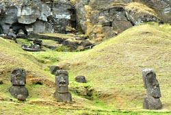 Sommige beelden liggen of staan nog op de plek waar ze uit de steen zijn gehakt. Hier verschillende Moai tegen de helling van de vulkaan Rano Raraku (oktober 2008).