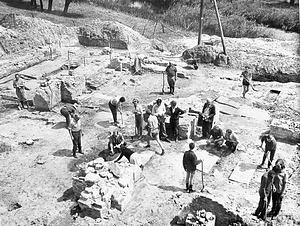 Overzichtsfoto van de opgraving van Hannekenswerve door Van Hinte, 1964.