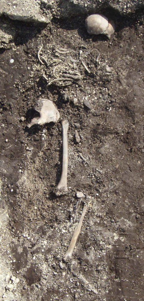 Het skelet van de 'oudste vrouw' van Zeeland in het graf van Serooskerke-Oranjezonsprink, circa 270 v. Chr.
