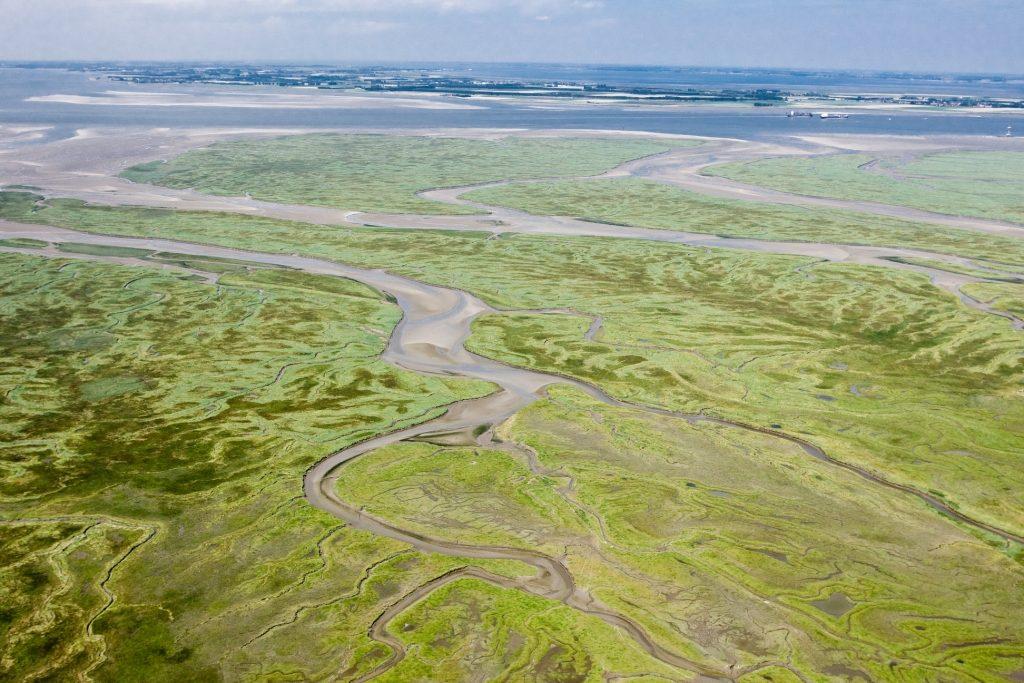 Luchtfoto van het Verdronken Land van Saeftinghe (Beeldbank Rijkswaterstaat, foto Joop van Houdt).