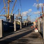 Breskens en de visserij