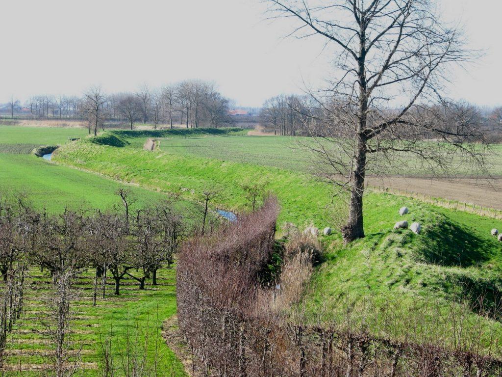 Binnendijk in de Zak van Zuid-Beveland (foto SLZ).