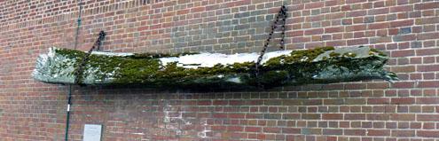 Onderkaakbeen van een walvis, hangend aan de muur bij de Campveerse Toren in Veere (2008)