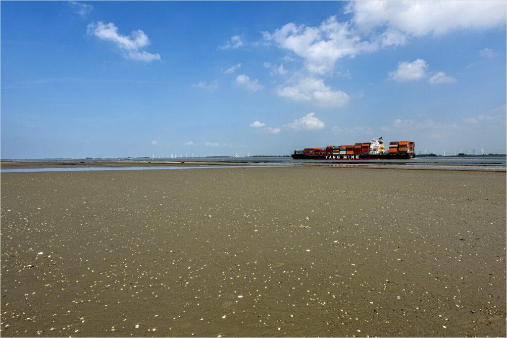 Containerschip bij het Land van Saeftinghe (foto Marcelle Davidse).