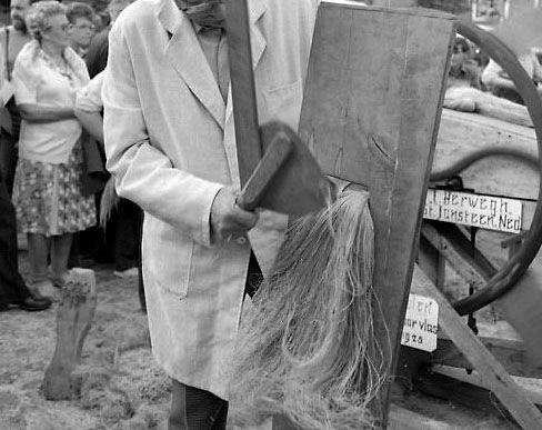Zwingelen, met grove houten spaan, tijdens een folkloristische dag in IJzendijke, 1981. Beeldbank Zeeland, foto O. de Milliano.