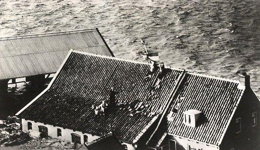 Gevlucht op het dak, zwaaiend met de Nederlandse vlag. Prentbriefkaart met opschrift: 'Nationale ramp in Nederland 1 februari 1953' (Zeeuwse Bibliotheek, Beeldbank Zeeland)