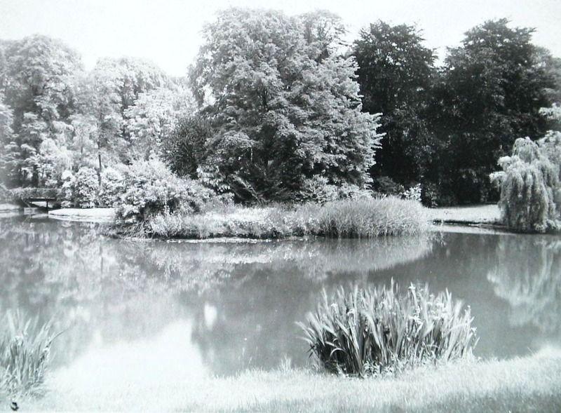 Meanderende vijver bij Veldzigt, Middelburg, omstreeks 1900. (Zeeuwse Bibliotheek, Beeldbank Zeeland)