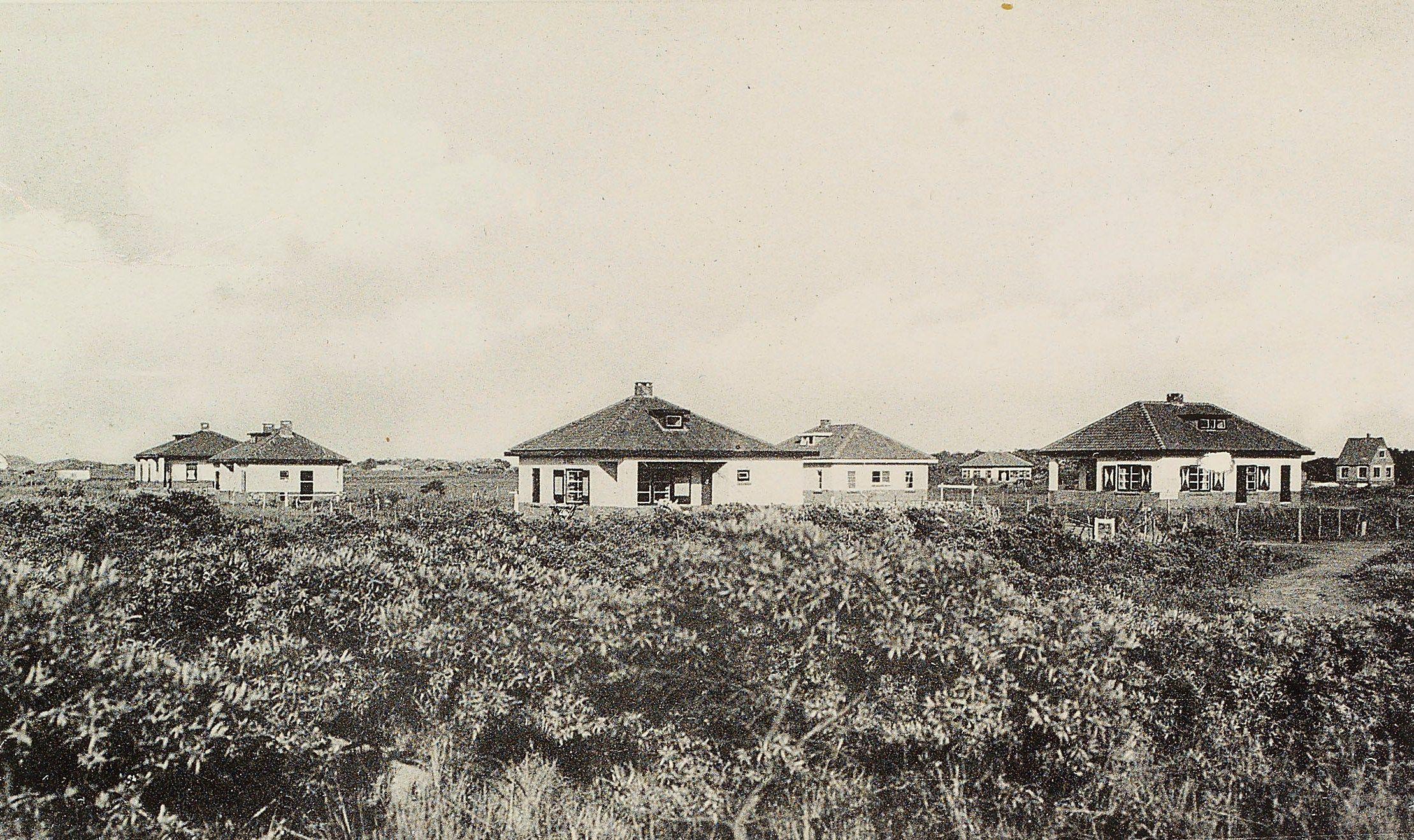 Enkele van de zomerwoningen in het duingebied van Renesse. Prentbriefkaart omstreeks 1950. (Zeeuws Archief, coll. Zeeuws Genootschap, Zelandia Illustrata)