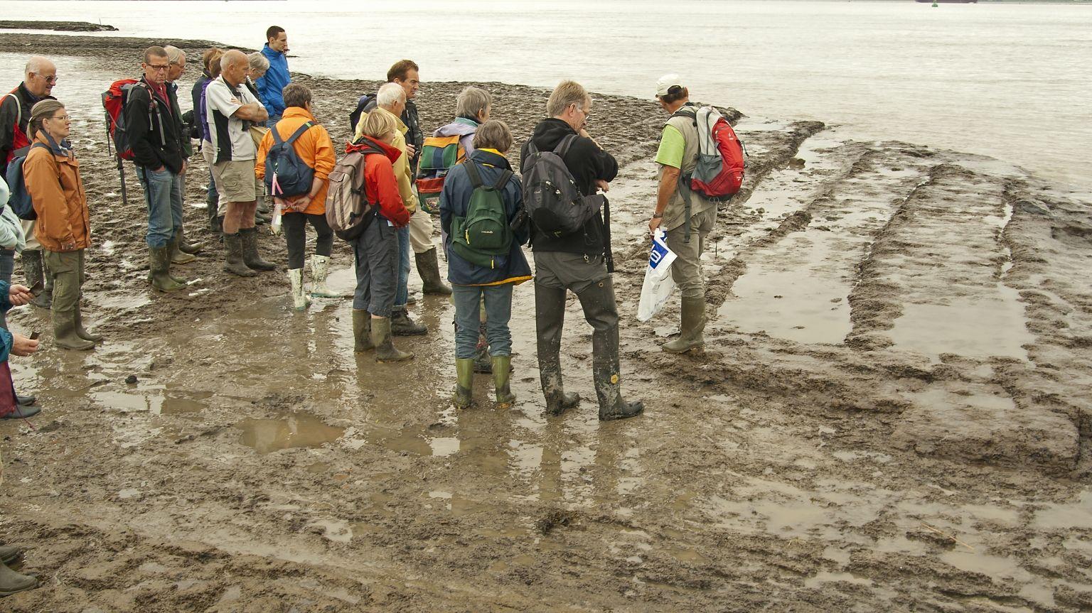 Restanten van het verdronken Oud-Rilland. (AWN)
