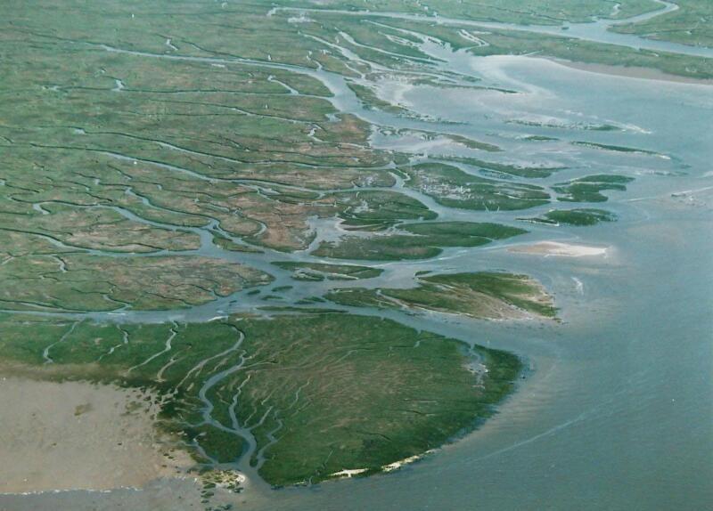 Schorren in het Verdronken Land van Saeftinghe vanuit de lucht gezien, circa 1995. Dit beeld geeft aardig weer hoe het grootste deel van onze provincie er ooit moet hebben uitgezien. (Zeeuwse Bibliotheek, Beeldbank Zeeland, foto A. Dingemanse)