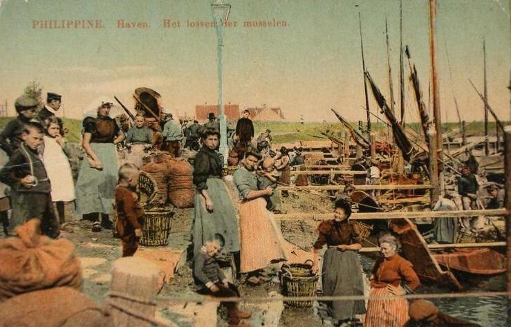 Het lossen van mosselen in de haven van Philippine. Prentbriefkaart van omstreeks 1910. (Zeeuwse Bibliotheek, Beeldbank Zeeland, collectie Lauret)