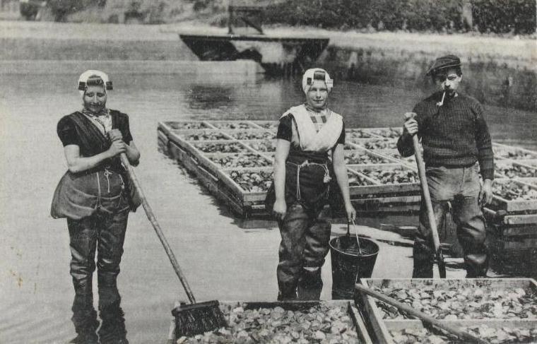 Oesters wassen omstreeks 1915. (Zeeuwse Bibliotheek, Beeldbank Zeeland)