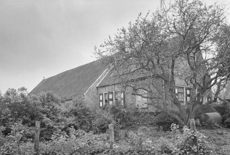 Hoeve Van der Meulen in 1966. (Beeldbank Rijksdienst voor het Cultureel Erfgoed, foto G.J. Dukker)