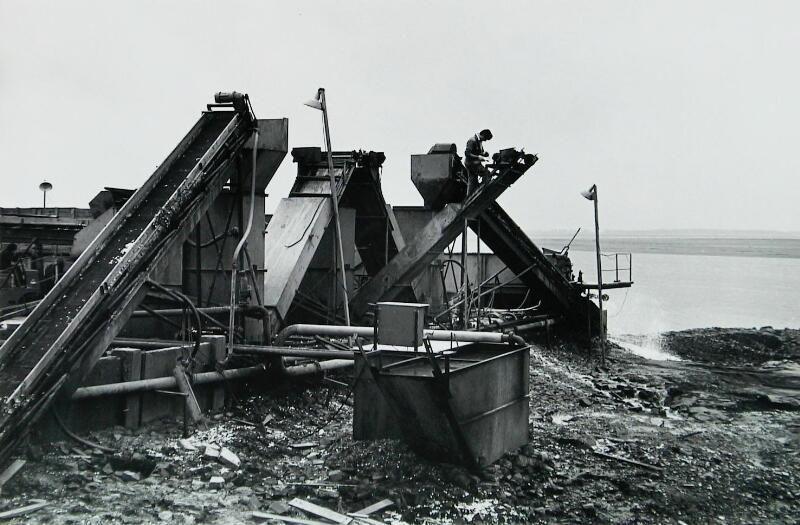 Het wassen van zilveruien op het havenplateau, Sint-Philipsland, 1968. (ZB, Beeldbank Zeeland, foto C. Kotvis)