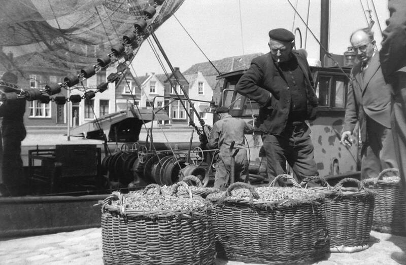 Manden met garnalen aan de kade in Brouwershaven, 1966. (Zeeuwse Bibliotheek, Beeldbank Zeeland, foto F. Jansen)