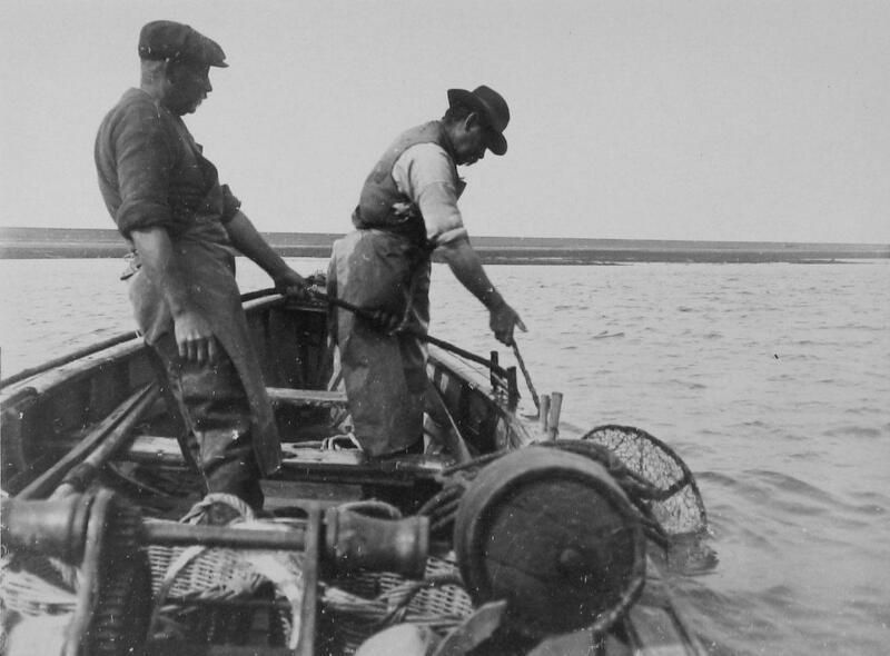 Een visser haalt een korf met kreeft op uit het water. Foto uit 1926. (Zeeuwse Bibliotheek, Beeldbank Zeeland, foto P. van der Feen)