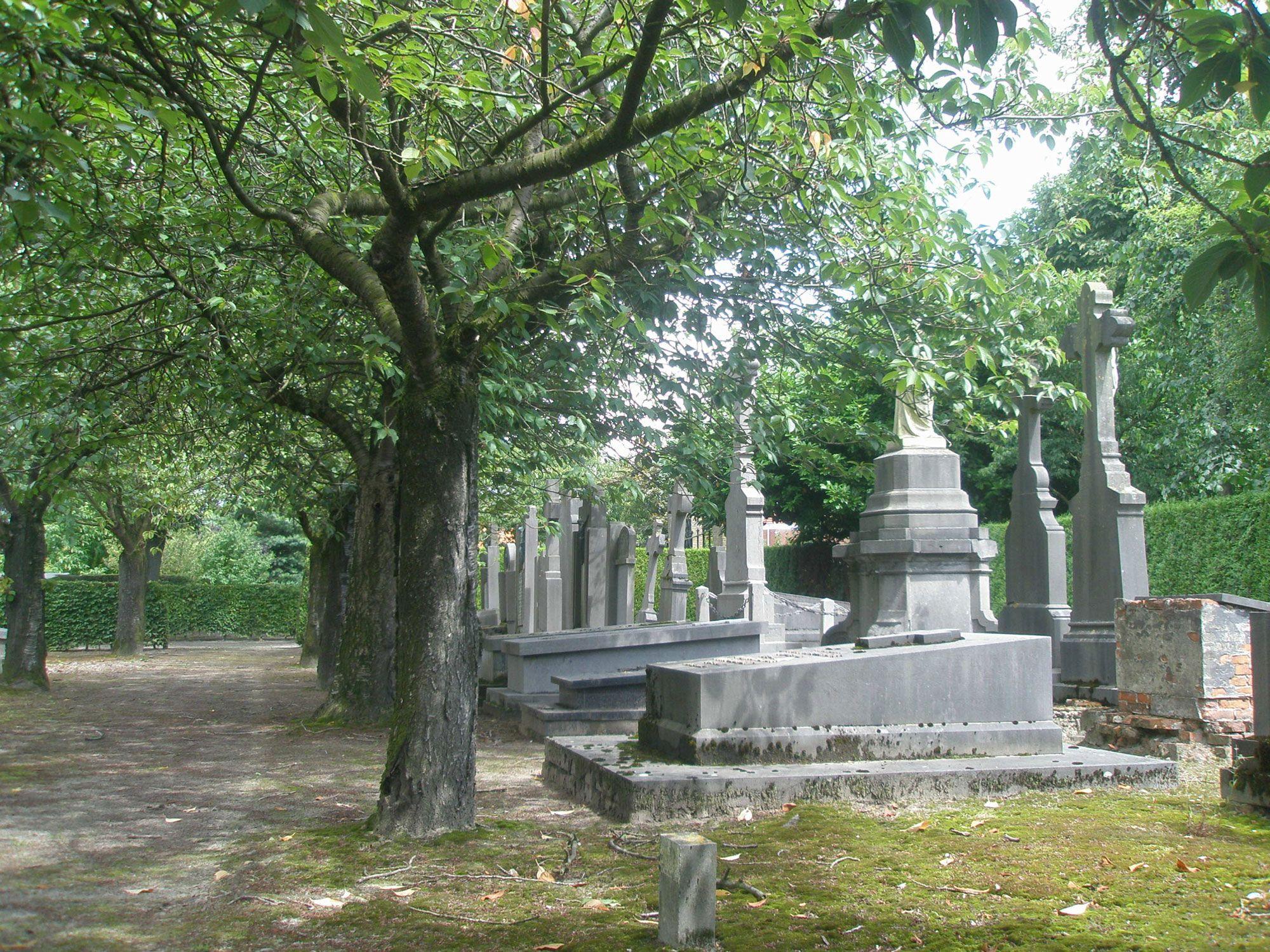 De monumentale praalgraven zijn gelegen achter een fraaie rij sierkersen.