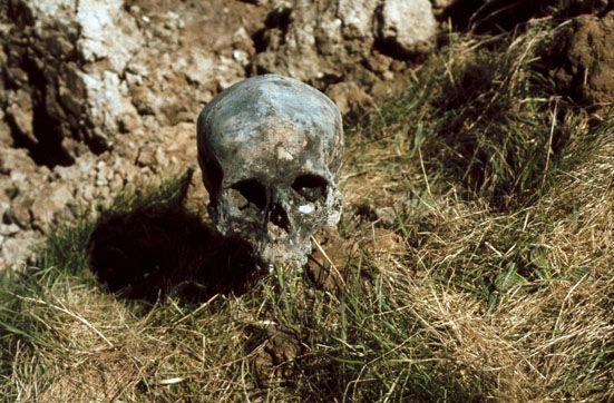 Schedel uit het in 1978 aangesneden kerkhof van het verdonken Sinte Philpslandt. Datering 1487-1532. (L.J. van der Gouwe, Sint Philipsland)