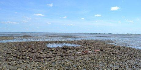 De resten van de fundamenten van de kerktoren van het verdronken Nieuwlande in mei 2014. (Beeldbank SCEZ)