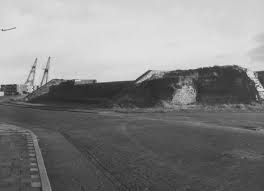 De Oostbeer aan de Commandoweg rond 1980. (Zeeuwse Bibliotheek, Beeldbank Zeeland)