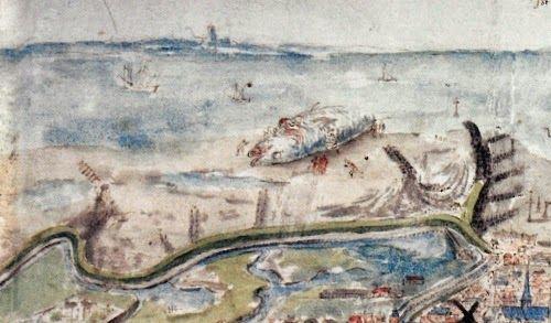 De aangespoelde potvis in 1517 op het zuidoostelijke strand van Vlissingen, waar nu de Oranjedijk is. Rechtsonder is nog net de stad van Vlissingen te zien. (Detail uit de Zelandia Descriptio van Antoon van den Wijngaerde uit ca. 1550)