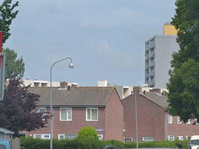 Paauwenburg anno 2013, gezien vanaf het kruispunt Sloeweg-Koudekerkseweg. (Collectie auteur)