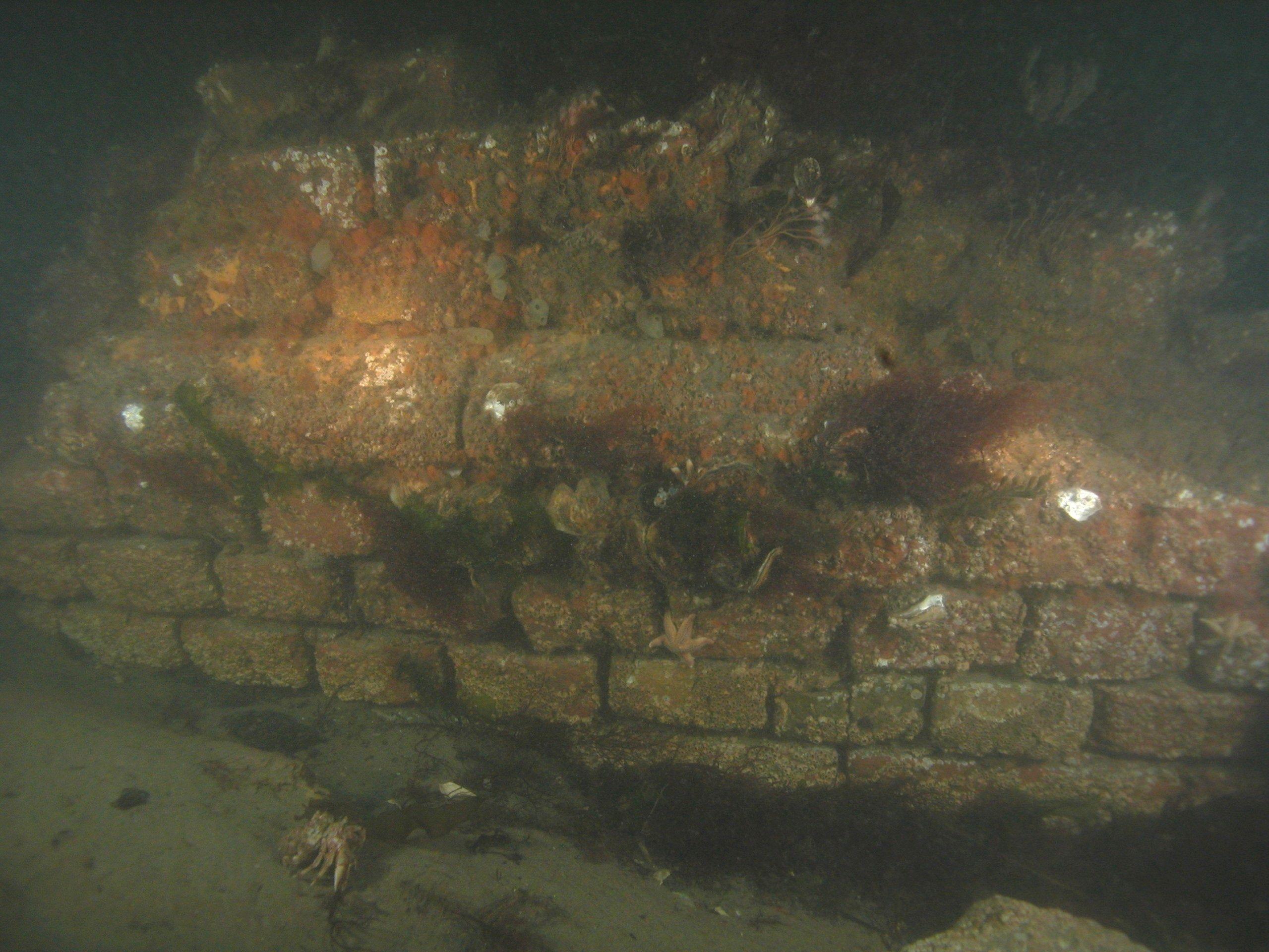 Muurresten op de bodem van het Lodijkshe Gat (foto E. Goyvaerts).