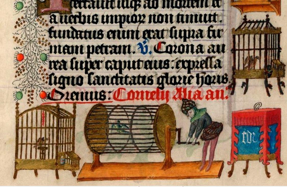 Detail met vogelkooitjes uit het getijdenboek van Catharina van Kleef, circa 1440.
