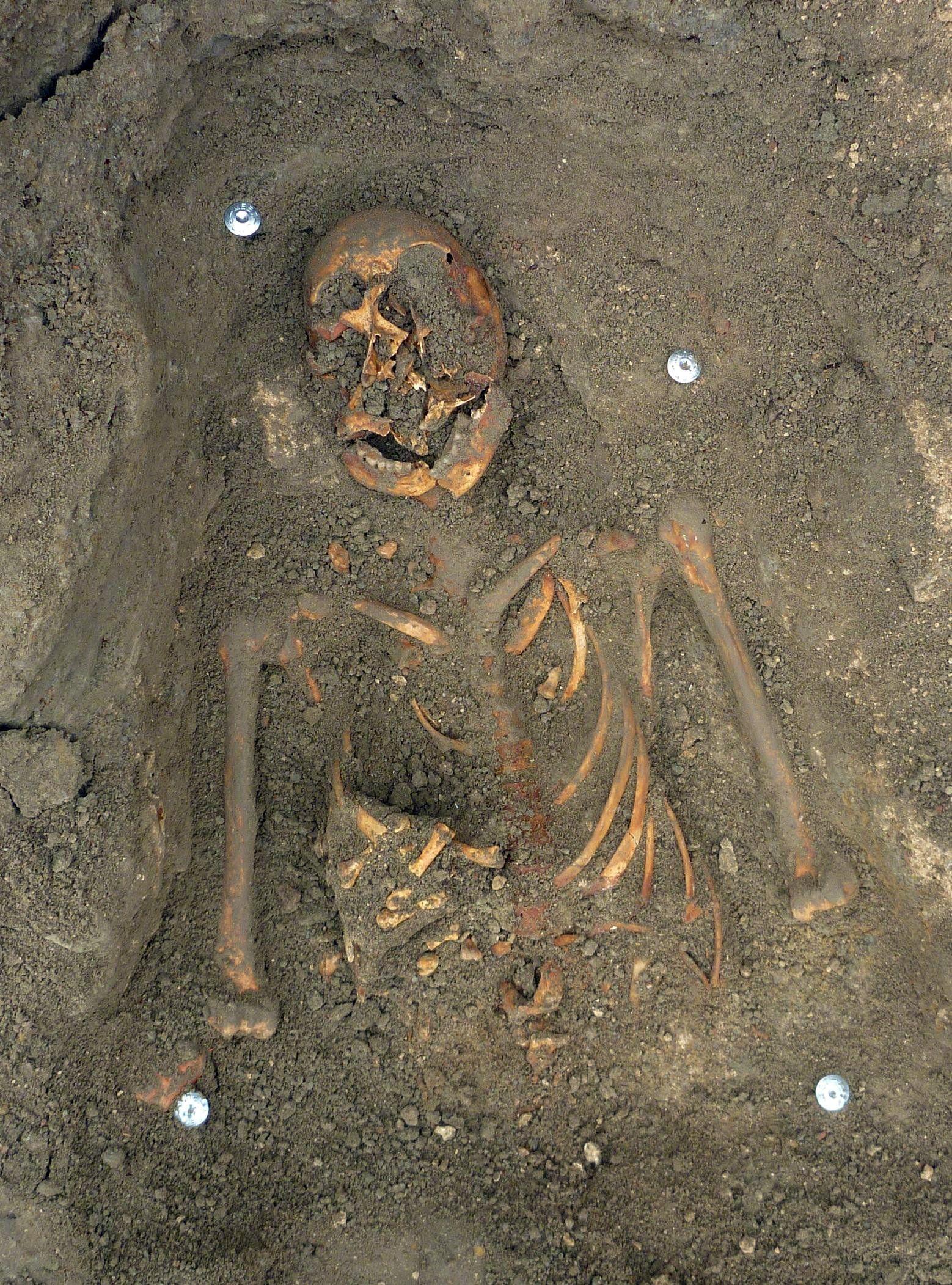 Het mysterieuze skelet van Fort Rammekens (foto WAD).