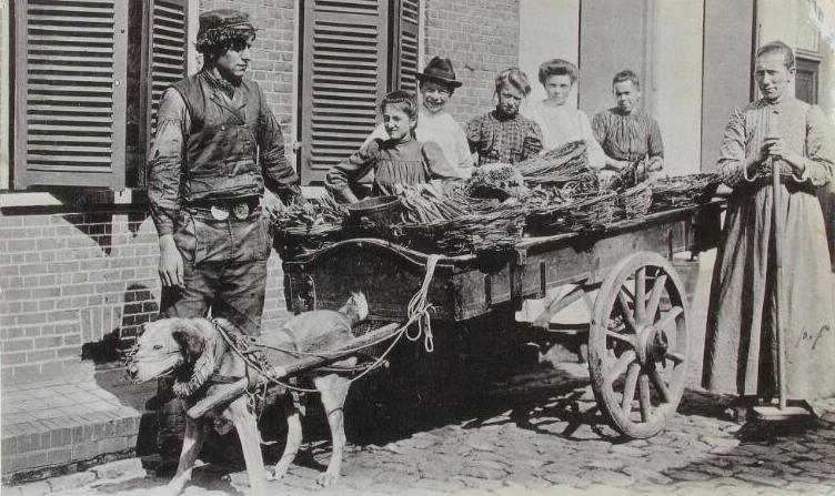 Groenteboer in Zeeuws-Vlaanderen omstreeks 1900. (ZB, Beeldbank Zeeland, foto A. van Overbeeke)