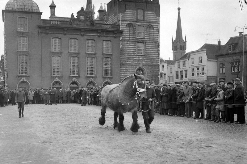 Paardenmarkt in Goes, 1962. (ZB, Beeldbank Zeeland, fotoarchief PZC)