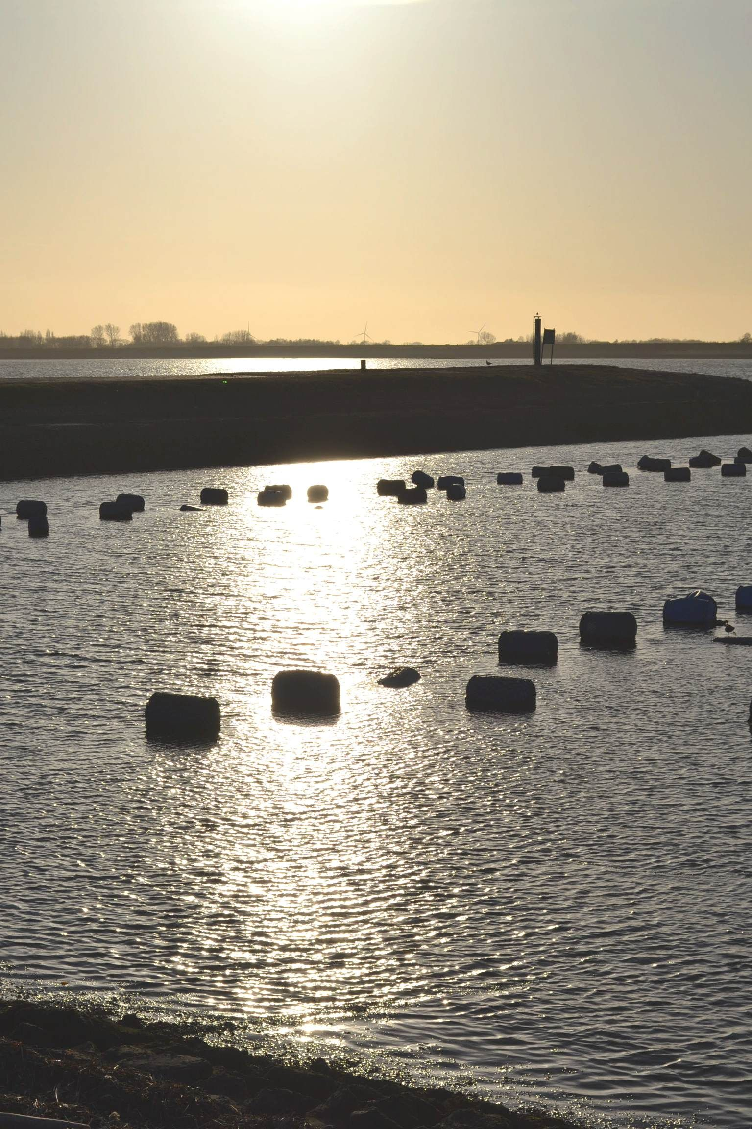 De voormalige veerhaven van Anna Jacobapolder bij avond, met mosselhangcultuur. Foto H.M.D. Dekker.