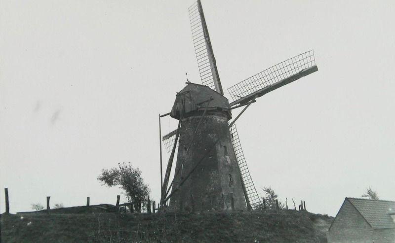 De molen van Verschaffel op het bolwerk circa 1930. (ZB, Beeldbank Zeeland)
