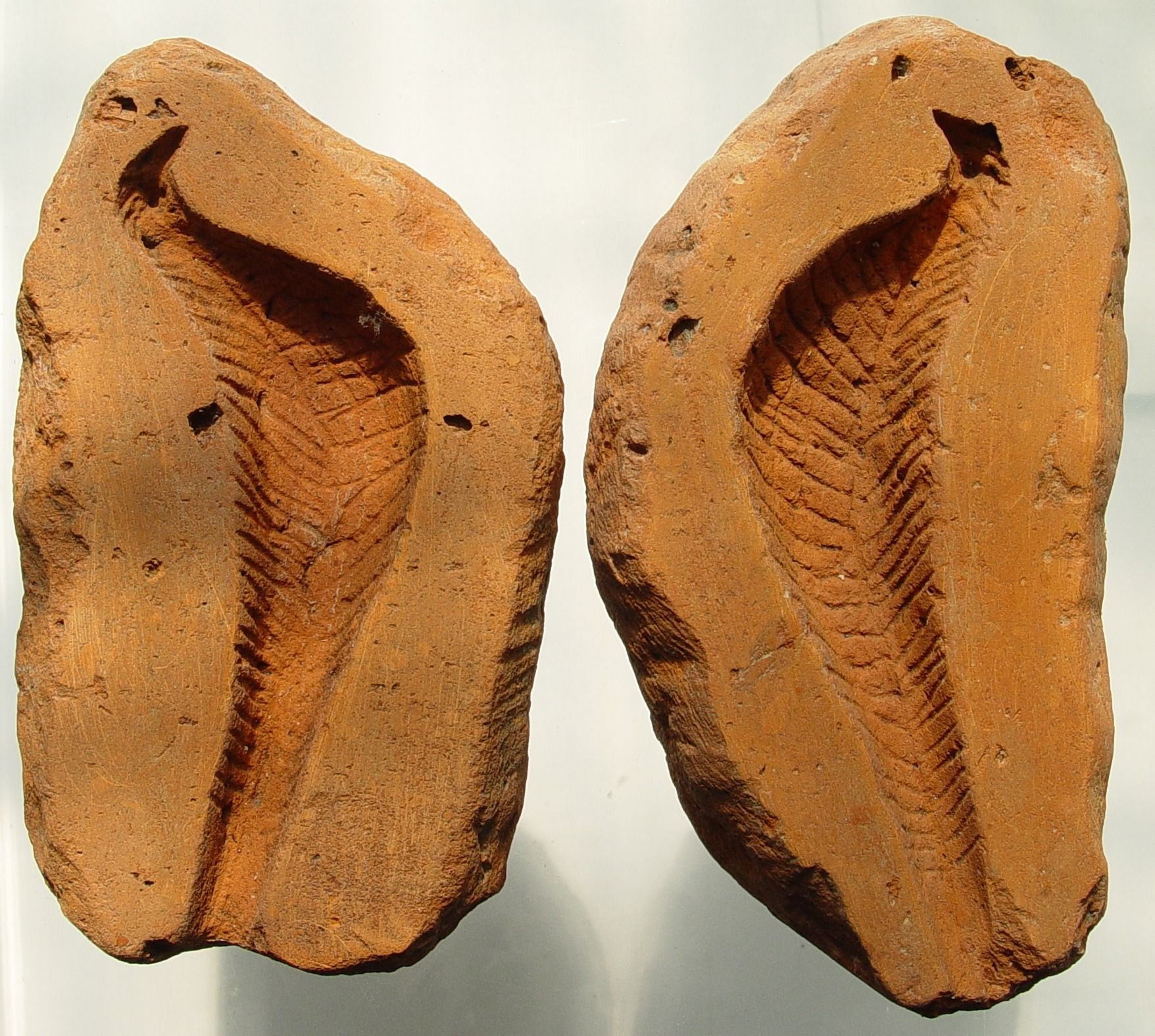 Twee halve mallen voor een terracotta vogelfiguur uit de ambachtelijke zone van Romeins Aardenburg.