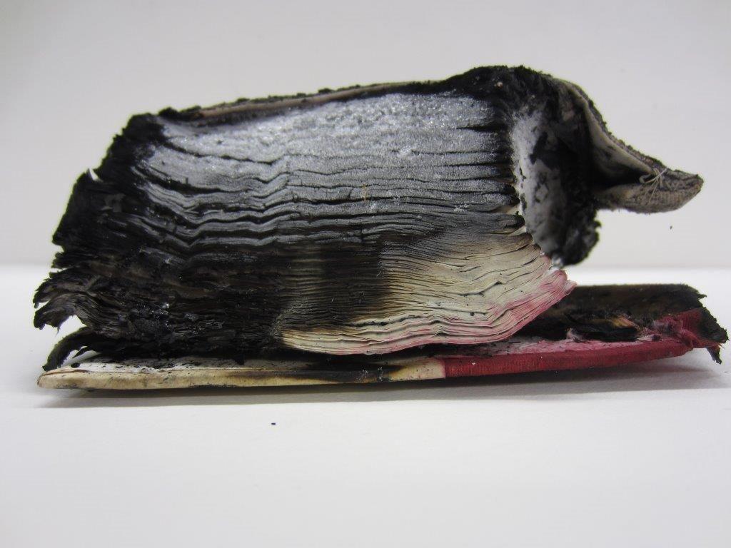De ingevroren bijbel van Hoek voor de behandeling. (Foto Tycho Kloeg)