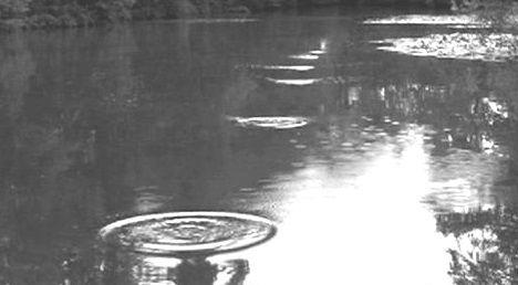 De platte steentjes die bij het keilen gebruikt worden, laten op de oppervlakte van het water kringen na.