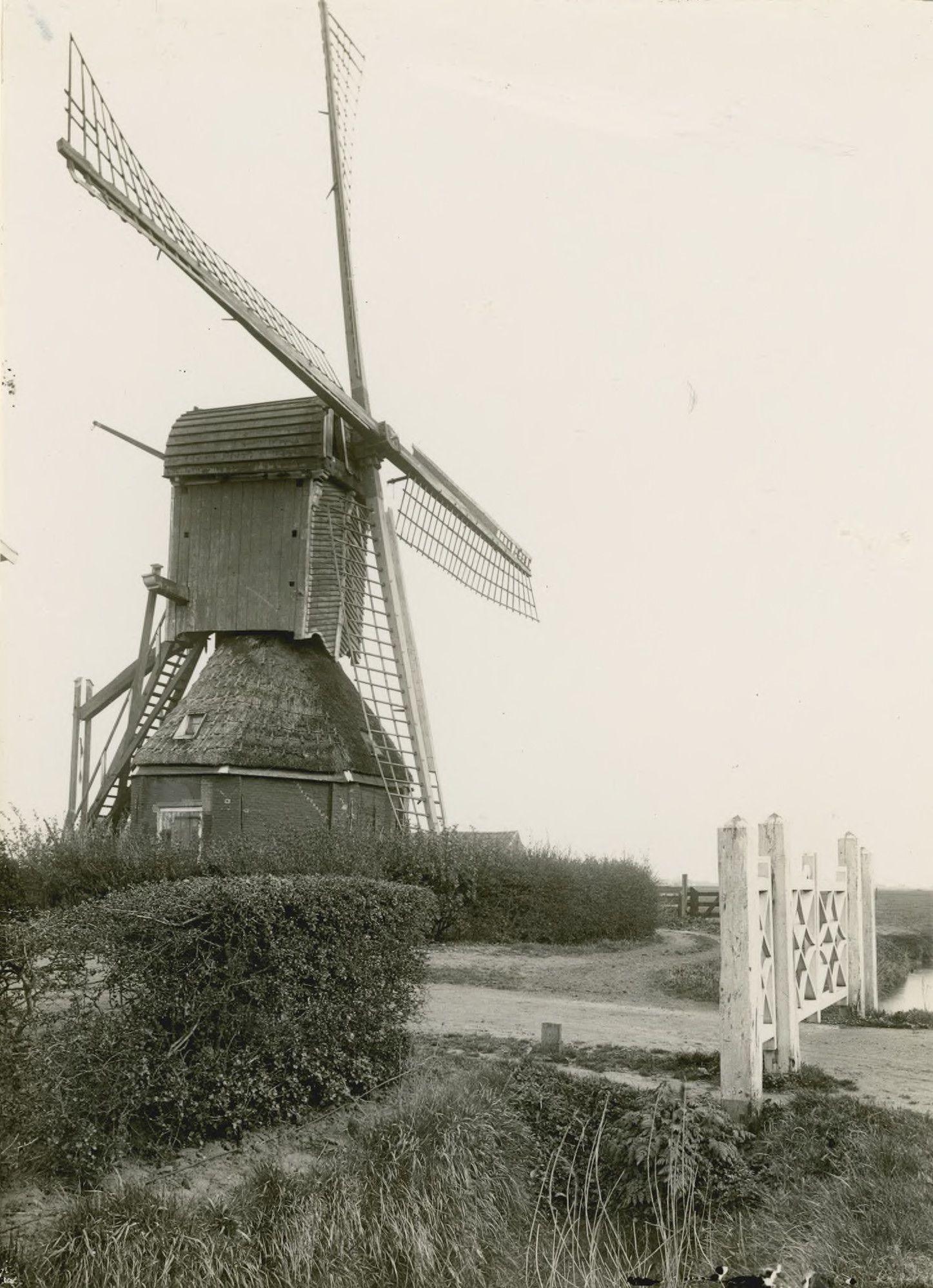 Wipmolen bij Noordwelle, circa 1910 (Zeeuws Archief, KZGW, Zelandia Illustrata). De inmiddels scheefgezakte molen werd in 1924 wegens bouwvalligheid gesloopt. Huis en bijgebouwen verdwenen als gevolg van de watersnoodramp van 1953. Met het omvallen in 1945 van de standerdmolen in Brouwershaven zijn beide typen molens geheel van Schouwen-Duiveland verdwenen.