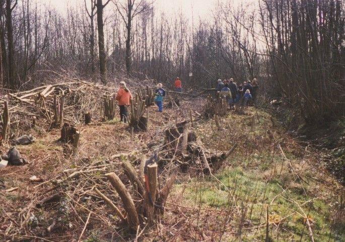 Een scoutinggroep aan het werk (voorjaar 1998) in 'De zes Hagen', het voormalig armenbos van Westenschouwen. De greppeltjes zijn volledig dichtgeraakt met humus. De bolle vorm van de mêêtjes zijn enigszins te onderscheiden.