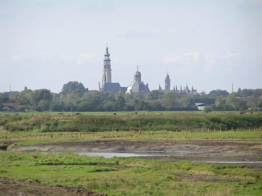 Weidevogelgebied met zicht op Middelburg