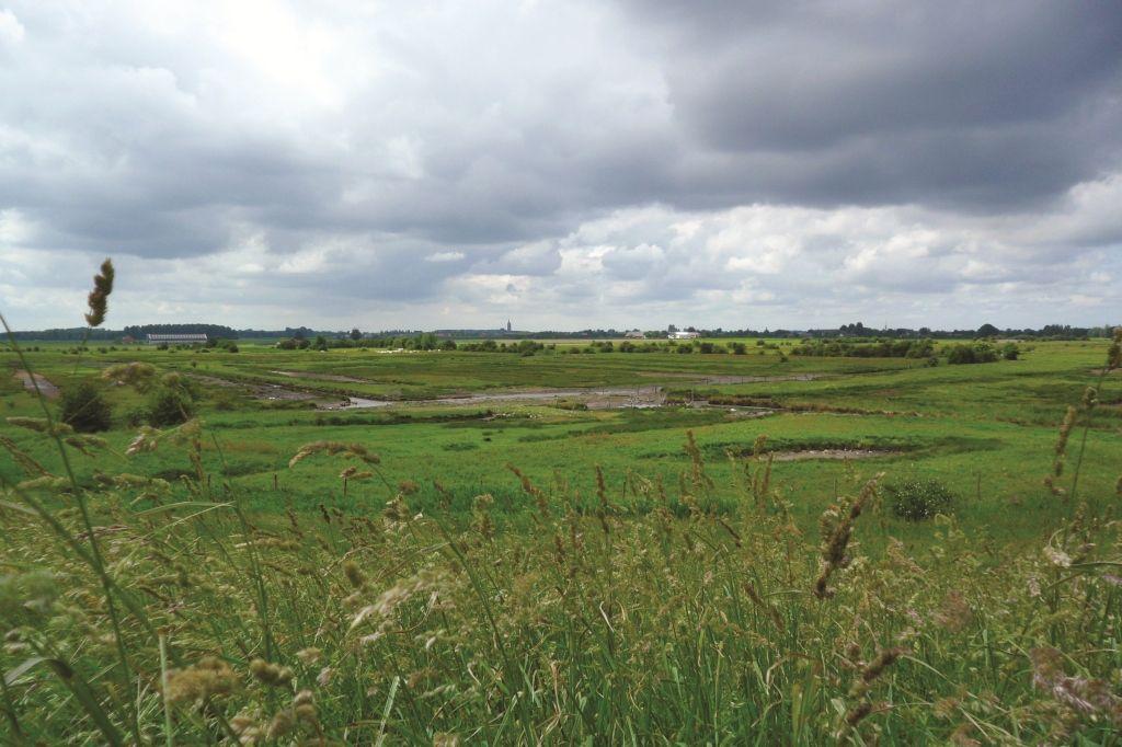 Het hollebollige landschap van de Kapelse Moer. (DNA Beeldbank Laat Zeeland Zien, foto Ben Biondina)